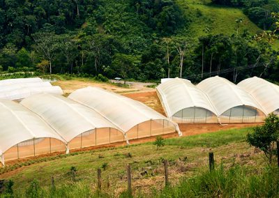T06.36 Fish farming for reincorporation and community development