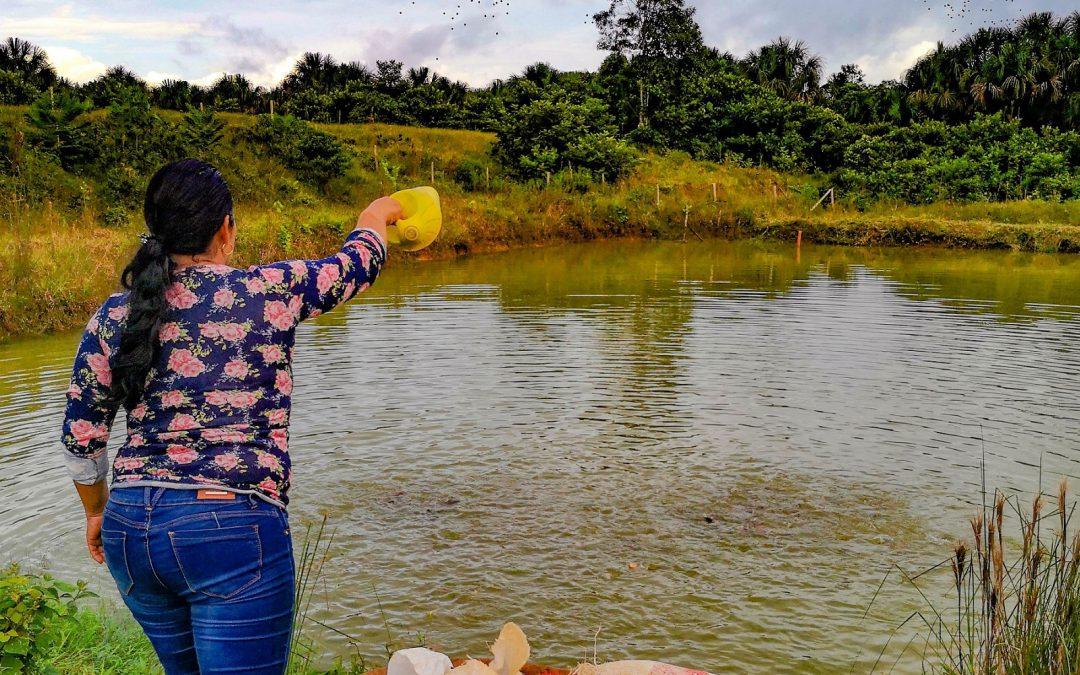 PUEDES – Plantando esperanza en las comunidades de Putumayo