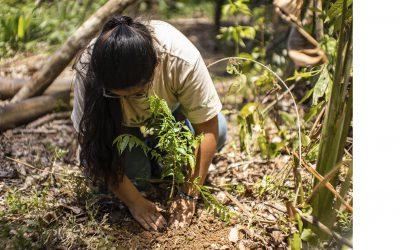Amazonía Joven Guaviare, formando líderes en defensa de la Amazonía
